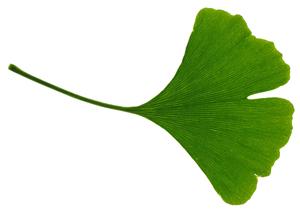 Spiruline Comprimés : Bon de réduction - Effets - Propriétés | Comment faire une cure ?